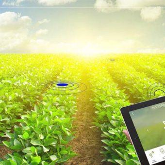 การเกษตรในยุค 4.0 เริ่มต้นแย่างไร
